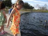 Ayumi with Ducks.jpg