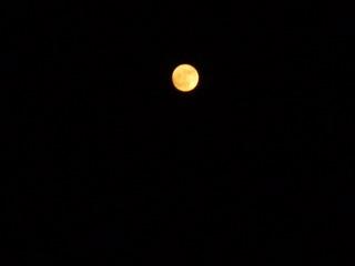 Blog Full moon 2.jpg