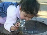 Kyoko drinking water.jpg