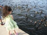 Kyoko with Ducks 12-12-05 (15).jpg