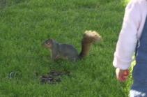 Kyoko with Squirrel.jpg