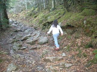 ayumi hiking trail.jpg