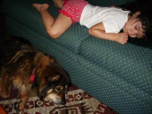 blog kyoko and cyndi sleeping.jpg
