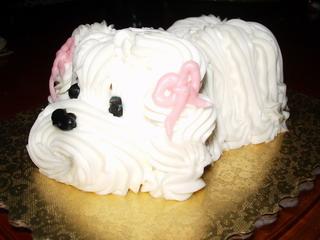 doggy cake.jpg