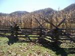 farm musium1.jpg