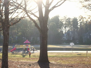 playground -far.jpg