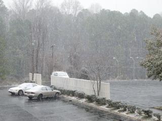 snow 2-1-07.jpg