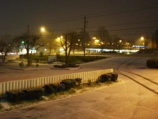 snow in 2007.jpg